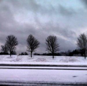 Suwanee, Ga., snow scene, 2/13/14